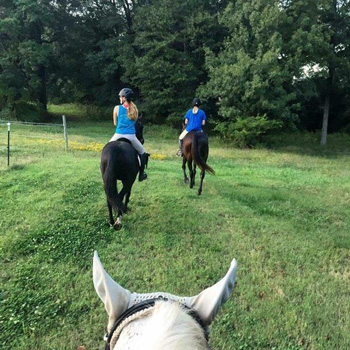 Horse Riding in Rock Hill, SC