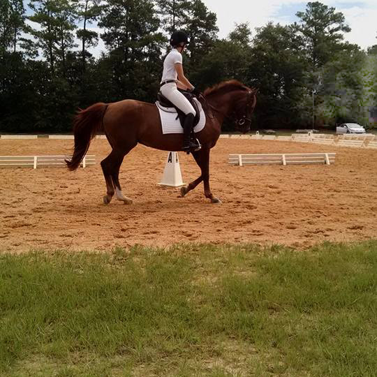 Rider on a horse at StoneRidge Farm in Rock Hill, SC